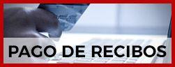 PAGO DE RECIBOS