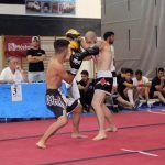 Cinco oros para Las Torres de Cotillas en el campeonato de España de artes marciales y deportes de contacto2