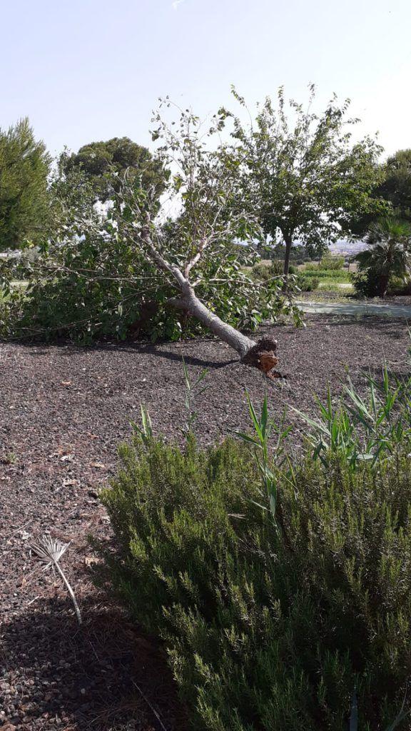 210617 daños lluvia dia 17 de junio 10